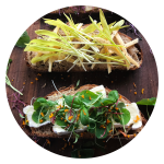Microgreens on toast