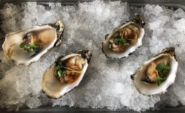 Microgreens on oysters