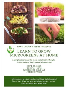 Microgreen workshop preview
