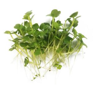 micro broccoli