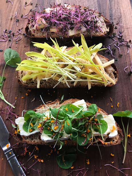 microgreens recipe toast trio
