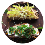 cheese microgreens toast