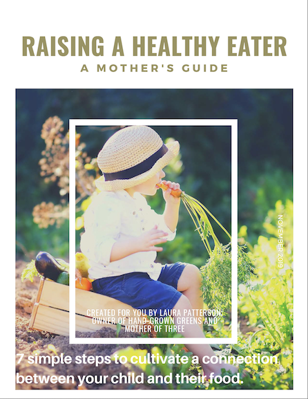 guide to raising a healthy eater preview