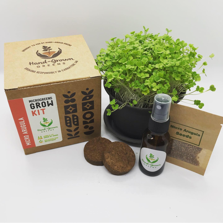 Micro arugula growing kit