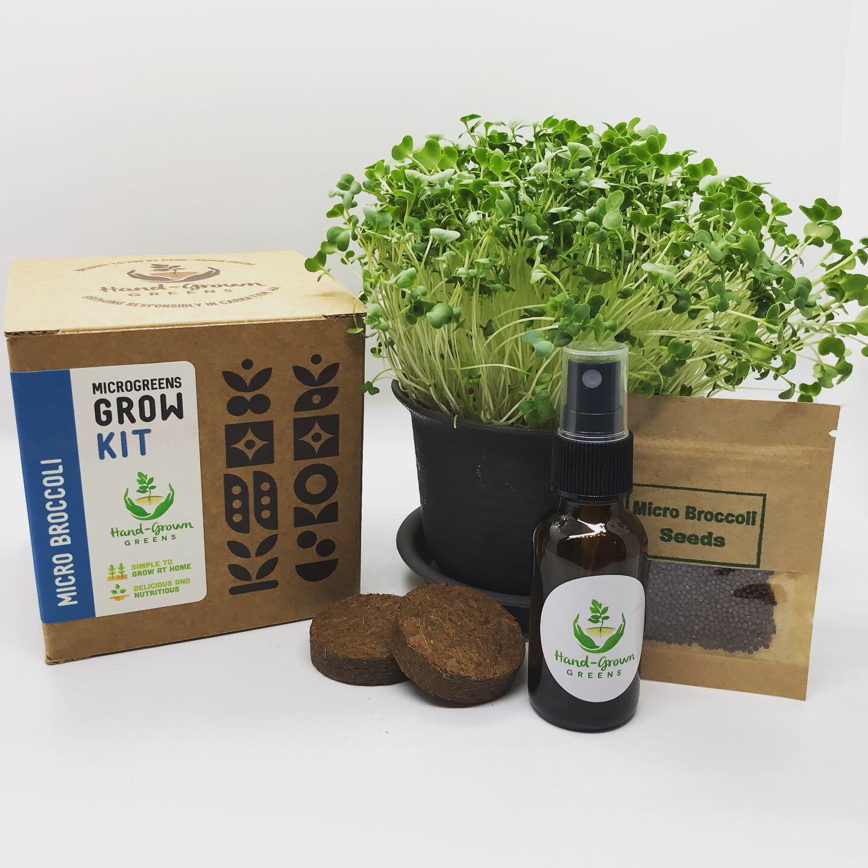 Micro broccoli growing kit