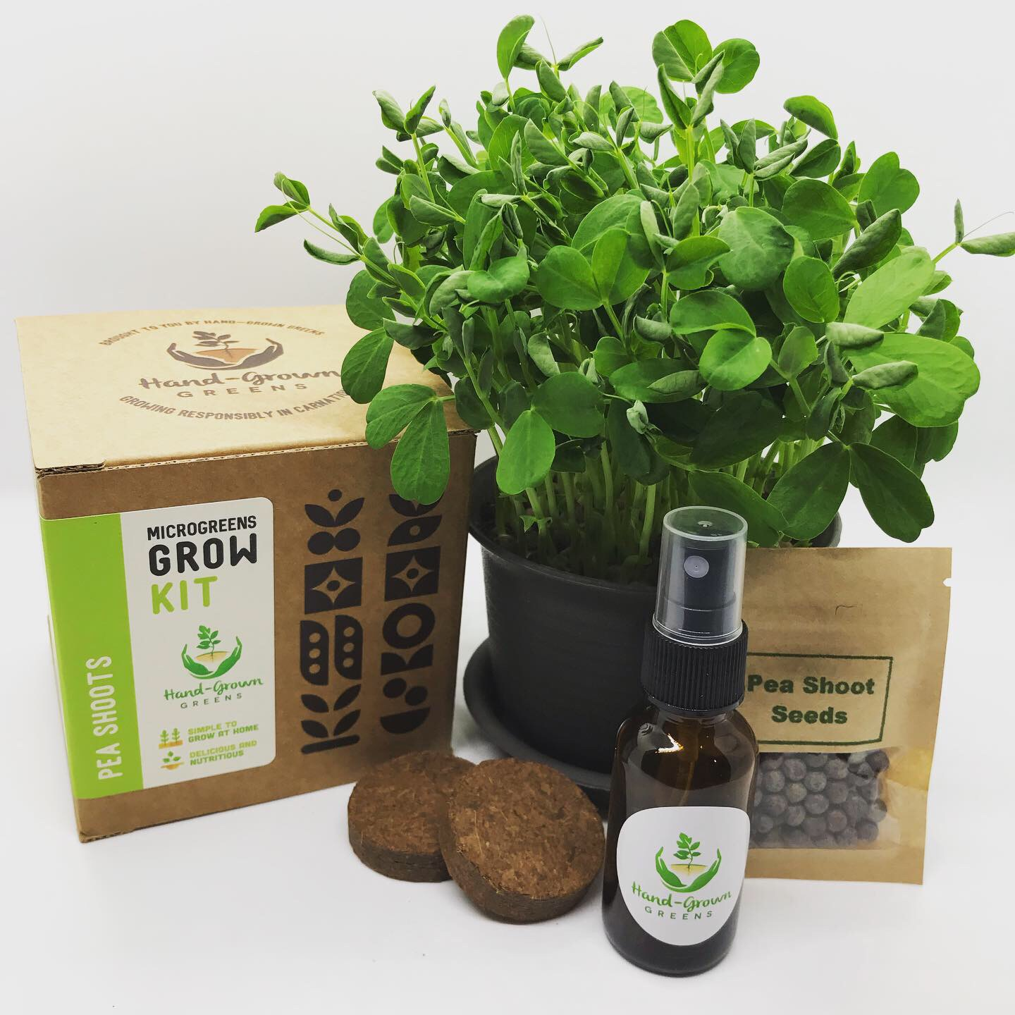 Pea shoots growing kit
