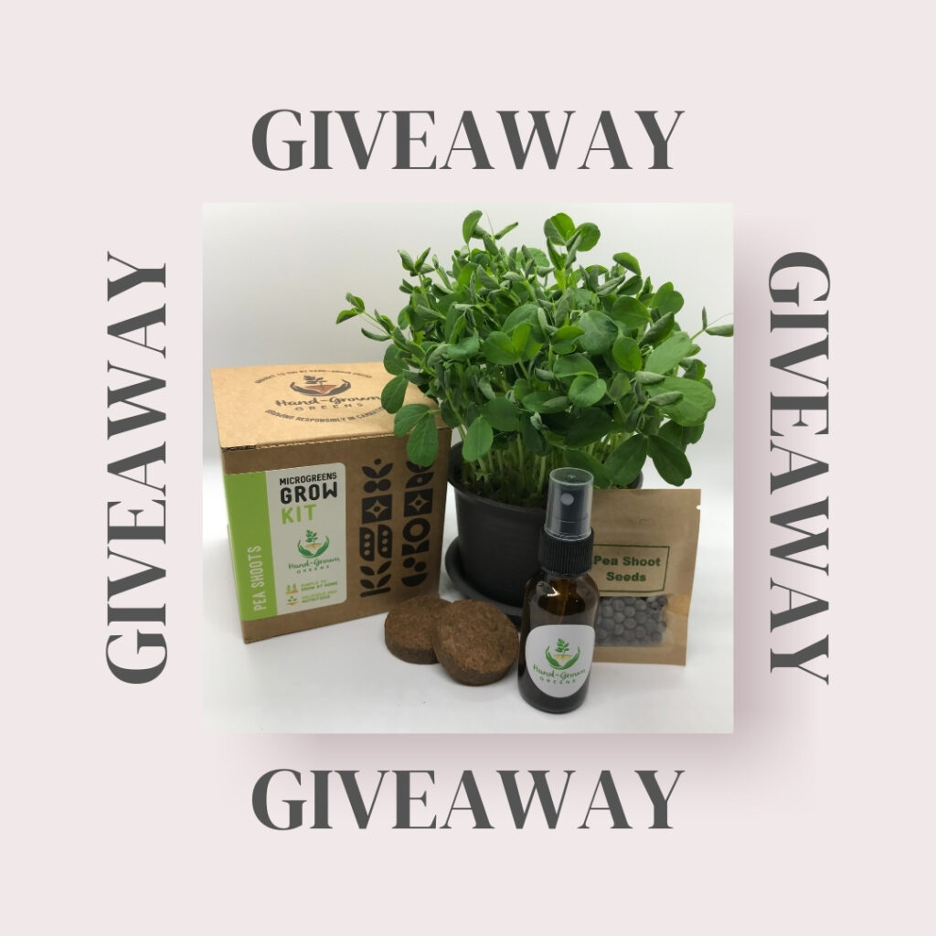 microgreen growing kit giveaway
