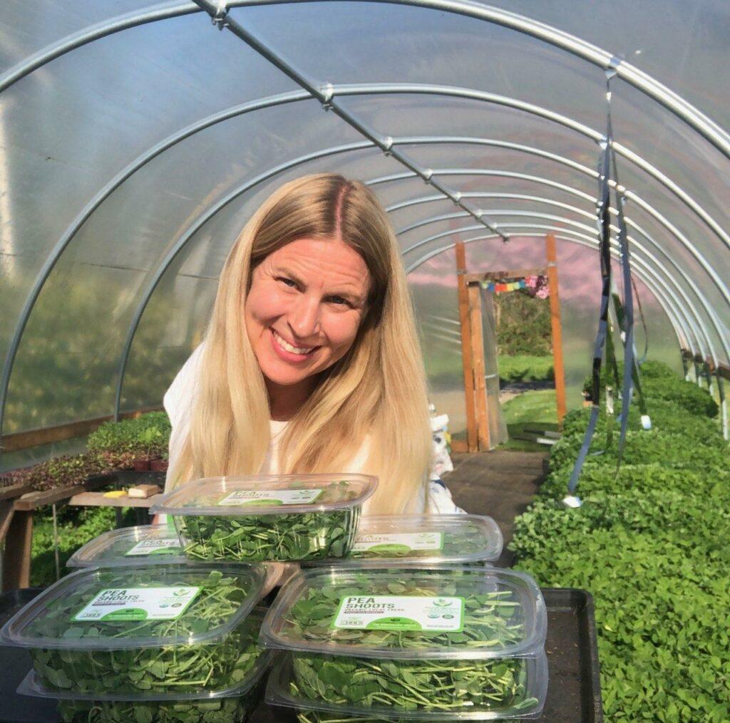 Microgreen farmer in greenhouse